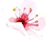 flower-one